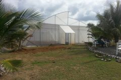 greenhouse-entrance