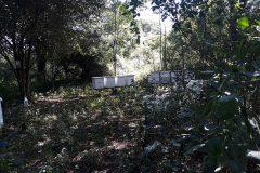 Site-Visits-2018-039