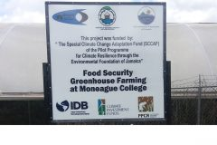 Moneague-College-sign-1