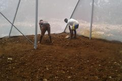 andre-and-clifford-leveling-greenhouse-soil