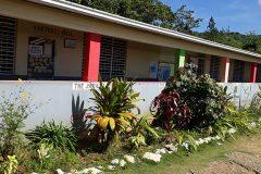 STEA - Freemans Hall Primary